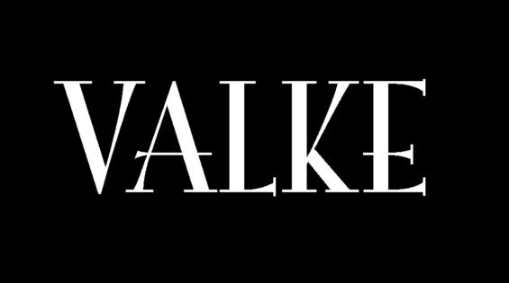 Valke_logo_klein